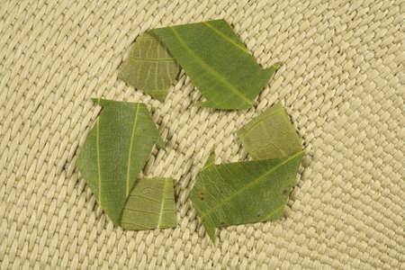 natureal: riciclaggio simbolo, simbolo riciclata ottenuta da foglie natureal sfondo, Mobius Loop