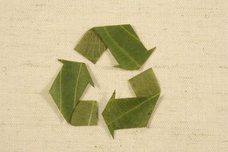 mobius loop: recycling symbol, recycled symbol made from leaves Mobius Loop copy space on natureal background