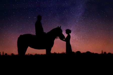 chestnut male: Couple in love against starry sky