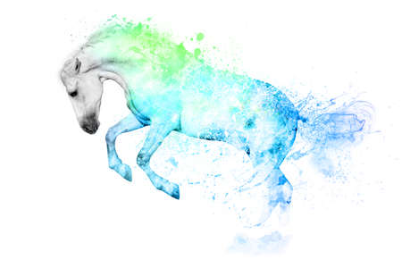 salto largo: White horse in blue and green paint stains