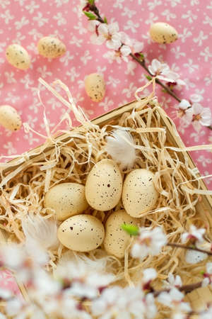 Easter eggs in the nest on beautiful  background