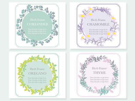 A set of four vector frames with various herbs: coriander, chamomile, oregano and thyme. Stock Illustratie