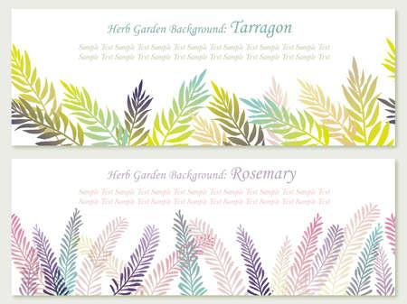 Set di varie erbe Vettoriali