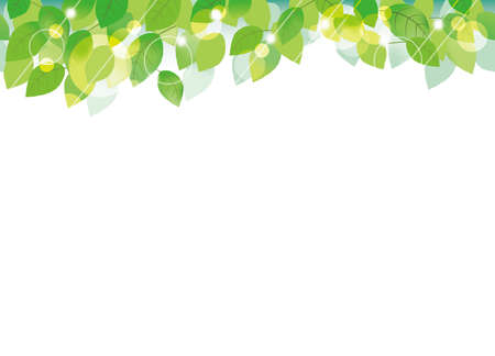 A seamless vector background/frame with green leaves. 向量圖像