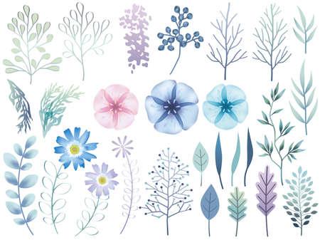 Set of assorted botanical elements, vector illustration. Stock Illustratie