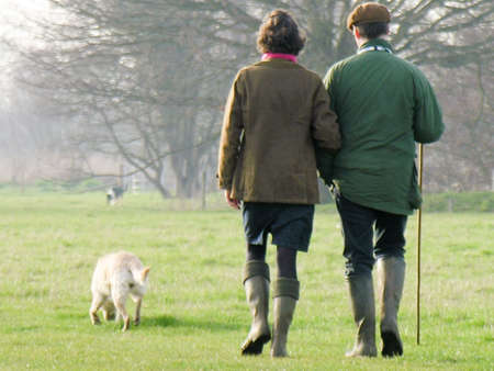 A couple down in Dedham out for a country stroll with their dogs. Stock Photo