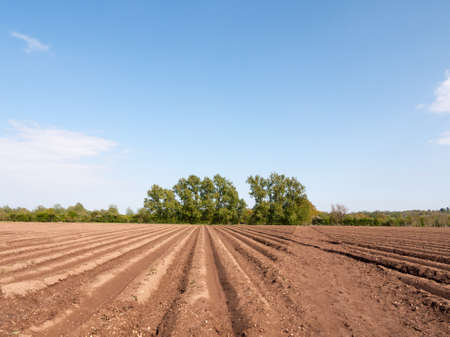 farmland with tractor tracks in the soil mud field wet and waiting to be planted in Stock Photo