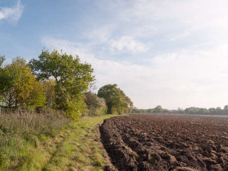dirtied: a plowed farm land ready to be sown and for crop to grow starting outside spring lush countryside  peaceful growing