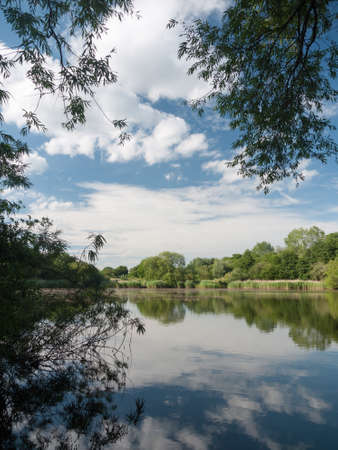 riverbank: beautiful blue and clouded sky reflected in lake with trees and reeds no people