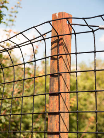 rusted metal iron bar holding a wire mesh on protected field; England; UK Stock Photo