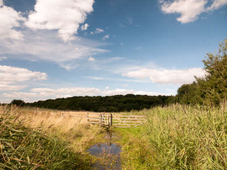 a water logged country walk meadow scene with wooden fence and gate blocked blue sky and green grass.