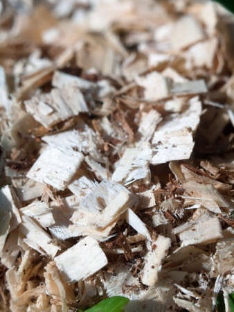 filings: close up of wooden wood chip shavings in a pile; England; UK