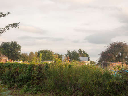sunset over the tops of an allotment garden sheds outside; Essex; England; UK