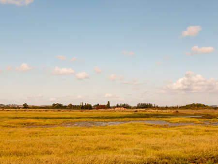turismo ecologico: open marshland landscape scene with blue skies, clouds, and grass; essex; england; UK Foto de archivo