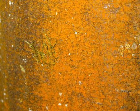 horrible orange rotting decay wood bark texture stain; essex; england; uk Stock Photo