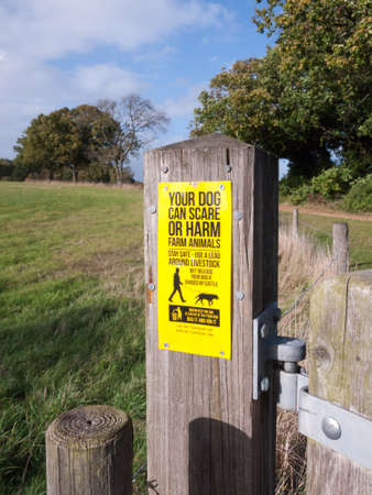 farm dog sign warning scare or harm farm animals yellow wooden post gate; essex; england; uk Stock Photo