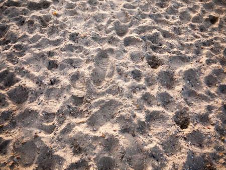 beach sand dunes floor texture background outside; west mersea, essex, england, uk Stock Photo