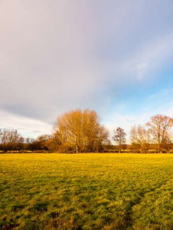 open empty green farming pasture field no people trees cloudy sky space; essex; england; uk Stock Photo