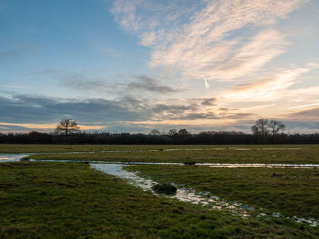 empty wet grass field low light sunset landscape dedham plain empty no people dramatic sky; essex; england; uk Stock Photo