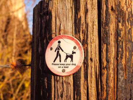 public walking wooden sign post dog sign please keep your dog on a lead; essex; england; uk Stock Photo