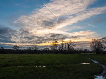 open plain grassland field trees sunset cloudy blue sky landscape; essex; england; uk