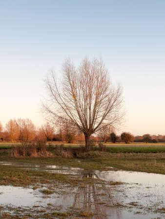 sunset waterlogged country walkway white sky autumn field dedham tree; essex; england; uk