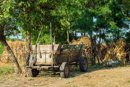 Empty romanian wood carriage in a summer day photo