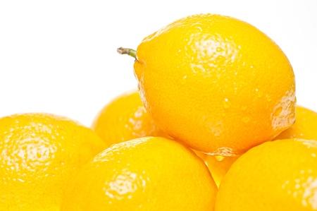 six lemons isolated on white background photo