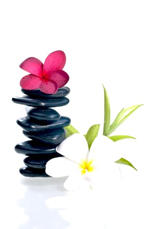 Eight balanced zen stones with red and white plumeria flower and bamboo plant over white