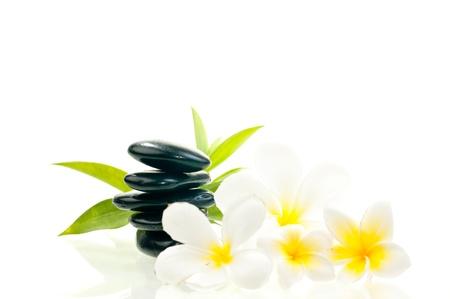 Schwarz zen Stein mit wei�en Bl�ten mit Bambus Hintergrund Lizenzfreie Bilder