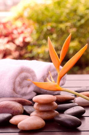 Spa concept with heliconia and zen stones outdoor photo