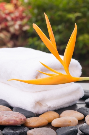 Spa garden with heliconia flower and fluffy towels  photo