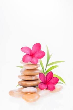 Red plumeria flowers on yellow river stones and a bamboo plant at the background Stock Photo