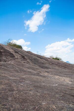 en mont�e: Uphill chemin rocailleux dans les bois verts Banque d'images