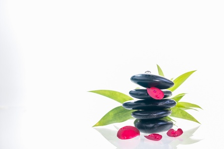 Balanced hot stones with red plumeria petals and green lucky bamboo leaves at the background  photo