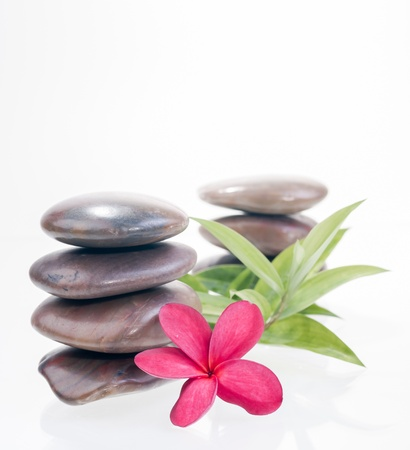 Balanced red zen stones with red plumeria and lucky bamboo leaves photo
