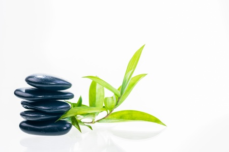 Balanced black hot stones with lucky bamboo leaves