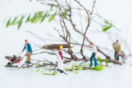 Miniature workmen cutting and felling trees together photo