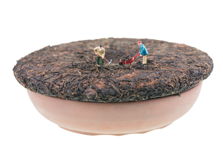 Miniature workers on a Pu-erh compressed chinese tea cake photo