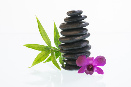 Black zen stones with Dendrobium orchid