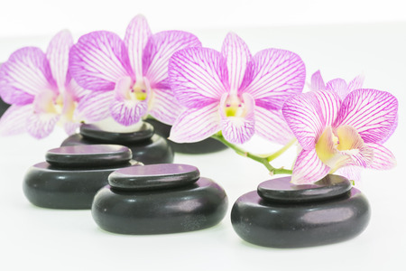 Spa with hot stones and orchids