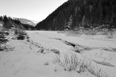 frozen river: Winter landscape, trees and frozen river