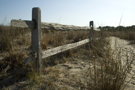 Split rail fence and vegetation of the sand dunes at Assateague State Park, Berlin, Maryland. Assateague is a barrier island on the Atlantic coast of the US.