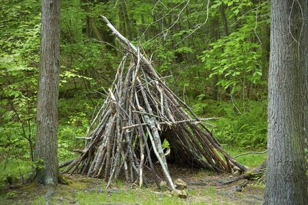 teepee: Close view of teepee shelter made of stacked branches, in the woods at Devils Hopyard State Park, East Haddam, Connecticut. Stock Photo