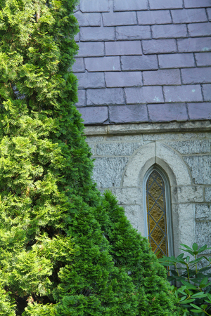episcopal: Narrow, pointed, vertical window in gray stone wall with green shrub outside St. James Episcopal Church, Keene, New Hampshire. Stock Photo
