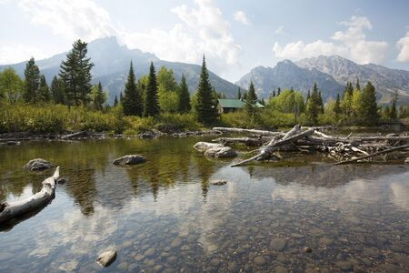 cottonwood: Teton Mountains, with driftwood and pine trees at Cottonwood Creek, and a cabin near Jenny Lake in Jackson Hole, Wyoming, horizontal.