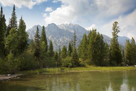 sunny day: El Grand Teton Monta�as y pinos en Lago Jenny, Jackson Hole, Wyoming, en un d�a soleado en verano.
