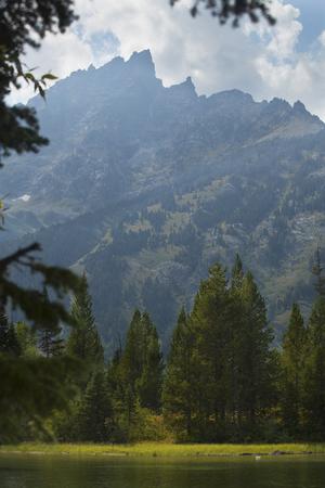 Jenny Lake, pinos, y la gama de Teton, Jackson Hole, Wyoming, vertical. Foto de archivo - 45704325