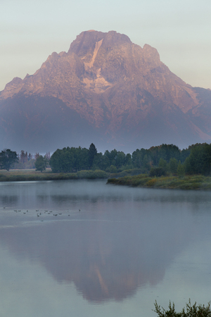 still water: Red glow of sunrise on Mt. Moran, Grand Teton National Park, with reflection in still water of the Snake River, vertical.