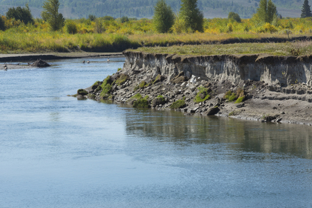 undercut: Winding course of the Buffalo Fork River near Moran, in northern Jackson Hole, Wyoming, with erosion along the riverbank.